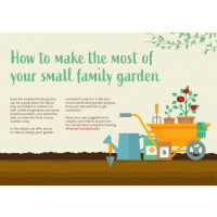 How to make the most of your small family garden